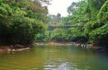 Mulu Park Borneo Malaysia (25)