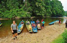 Mulu Park Borneo Malaysia (26)