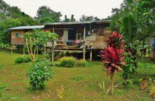Mulu Park Borneo Malaysia (29)