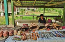 Mulu Park Borneo Malaysia (30)
