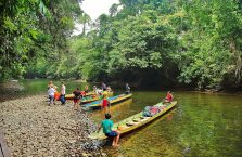 Mulu Park Borneo Malaysia (31)