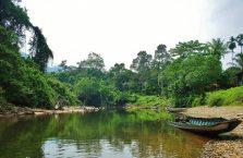 Mulu Park Borneo Malaysia (4)