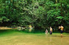 Mulu Park Borneo Malaysia (42)