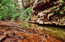Mulu Park Borneo Malaysia (46)