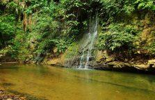 Mulu Park Borneo Malaysia (48)