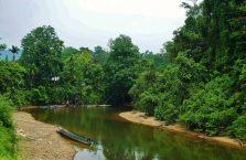 Mulu Park Borneo Malaysia (7)