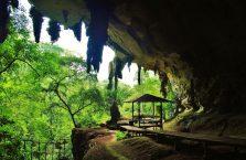 Niah national park Borneo Malaysia (11)