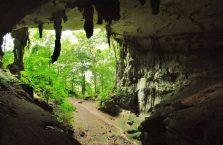 Niah national park Borneo Malaysia (12)
