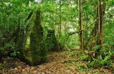 Niah national park Borneo Malaysia (29)