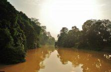 Niah national park Borneo Malaysia (33)