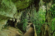 Niah national park Borneo Malaysia (4)