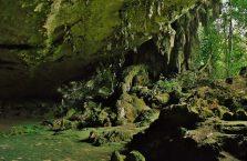 Niah national park Borneo Malaysia (5)