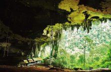 Niah national park Borneo Malaysia (7)
