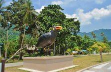 Pulau Tioman (28)
