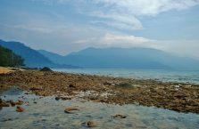 Pulau Tioman (38)