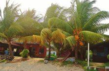 Pulau Tioman (56)