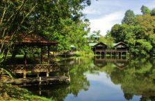 Rainforest Discovery Centre Borneo Malaysia(2)