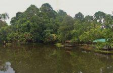 Rainforest Discovery Centre Borneo Malaysia(5)