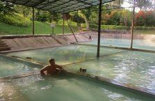 Sanakin hot springs Sabah Malaysia (3)