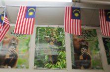 Sandakan Borneo Malaysia (10)