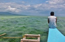 Sandbar Bais City Negros (1)