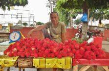 Sandbar Bais City Negros (12)