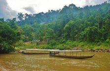 Taman Negara Malaysia (10)