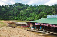 Taman Negara Malaysia (4)
