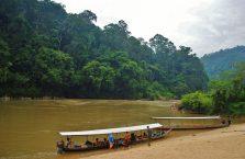 Taman Negara Malaysia (41)