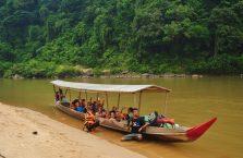 Taman Negara Malaysia (42)