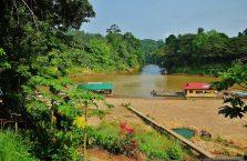 Taman Negara Malaysia (44)