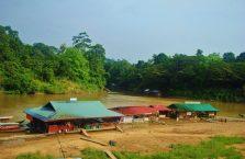 Taman Negara Malaysia (9)