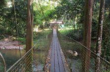 Tawau Hills Park (12)