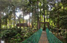 Tawau Hills Park (13)
