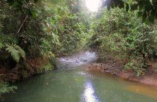 Tawau Hills Park (8)
