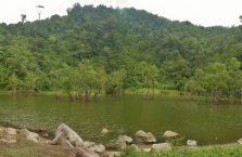 Twin lakes Negros (7)