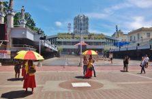 Cebu City (24)