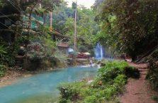 Kawasan falls Cebu (10)