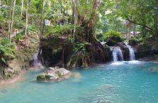 Kawasan falls Cebu (13)
