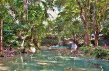 Kawasan falls Cebu (6)