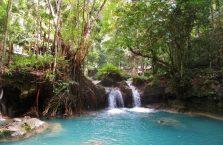 Kawasan falls Cebu (7)