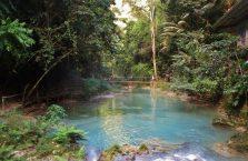 Kawasan falls Cebu (9)