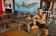 Oslob whale sharks (4)