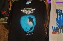 Oslob whale sharks (5)